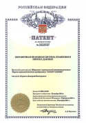 2001 21 patent